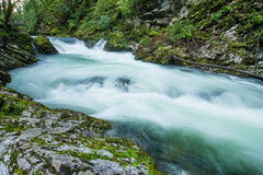 Vintar gorge near Bled Stock Images
