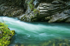 Vintar gorge near Bled Royalty Free Stock Images
