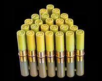 Vinte shell de espingarda do calibre em um teste padrão Imagem de Stock Royalty Free