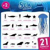 Vinte um animal de mar mostram em silhueta a parte 2 ilustração royalty free