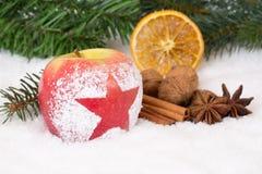 Vinteräpplefrukt på julgarnering med snö Royaltyfri Foto
