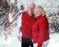 Vinter-älska pensionärer Arkivbilder