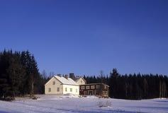 vinter 028 royaltyfri fotografi
