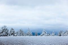 vinter Arkivbilder