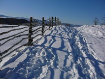 Vinter 4 Royaltyfri Fotografi