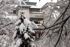Vinter Enorma farliga isistappar hänger ovanför gatahothälsan och livet av folk som hänger från taket av byggnad Arkivbilder