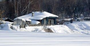 vinter för blommasnowtid Fotografering för Bildbyråer