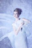 vinter för drottning för makeup för idérikt mode för konst hög key Royaltyfria Foton
