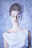vinter för drottning för makeup för idérikt mode för konst hög key Arkivbilder