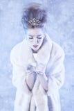 vinter för drottning för makeup för idérikt mode för konst hög key Royaltyfri Foto