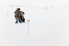 vinter för fältsnowöverlevnadar Royaltyfri Bild