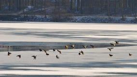 vinter för fiskeislake arkivbilder