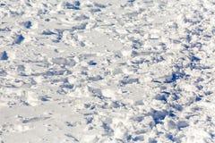 vinter för fotspårsnowtid Solig dag för vinter` s driva Arkivfoton
