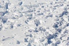 vinter för fotspårsnowtid Solig dag för vinter` s driva Arkivbild