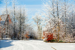 vinter för landsdagby Arkivfoton