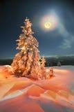 vinter för saga för snow för härlig skog röd s för stuga finlandssvensk Royaltyfri Foto