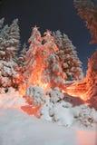 vinter för saga för snow för härlig skog röd s för stuga finlandssvensk Royaltyfri Bild
