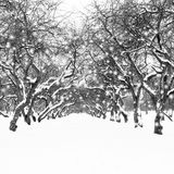 vinter för solnedgång för aftonberg s ural Arkivbilder