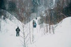 vinter för swan för frostwork för bakgrundsbluedröm Royaltyfria Bilder