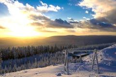 vinter för swan för frostwork för bakgrundsbluedröm Royaltyfria Foton