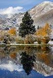 vinter för toppig bergskedja för fallliggandeberg Arkivbilder