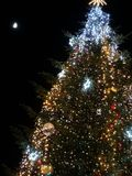 vinter för tree för natt för julferieillustration arkivbild