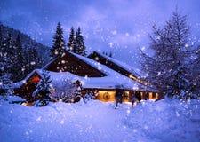 vinter för trees för julliggandenoel Royaltyfri Fotografi
