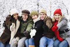 vinter för vängruppyttersida Royaltyfri Fotografi