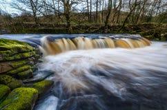 vinter för vatten för flod för kustisliggande Fotografering för Bildbyråer