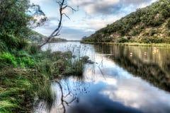 vinter för vatten för flod för kustisliggande Royaltyfri Bild