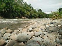 vinter för vatten för flod för kustisliggande Royaltyfria Bilder