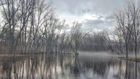 vinter för vatten för flod för kustisliggande arkivbilder