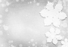vinter för vektor för bakgrundsillustrationsnowflakes royaltyfria bilder