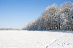Vinter field Arkivbilder
