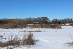 Vinter field Arkivbilder