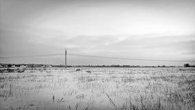 Vinter field Fotografering för Bildbyråer