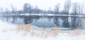 Vinter flodlandskap royaltyfria foton