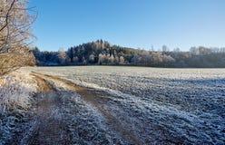 Vinter fryst bygdgrusväg med det djupfrysta fältet och träd Royaltyfria Bilder