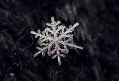 Vinter H?rliga sn?flingor - sn?ra ?t is royaltyfri foto