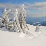 Vinter i berg arkivbilder