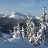 Vinter i berg arkivbild