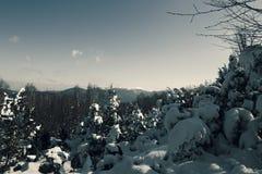 Vinter i berg Royaltyfria Bilder