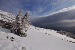 Vinter i berg Arkivfoto