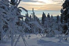 Vinter i berg, nytt år Royaltyfri Fotografi