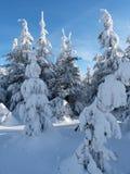 Vinter i berg, nytt år Arkivbilder