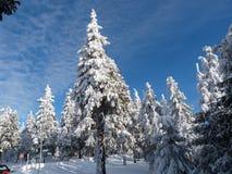 Vinter i berg, nytt år Royaltyfri Bild