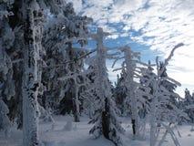 Vinter i berg, nytt år Arkivfoto