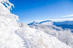 Vinter i Bieszczady, Polen Royaltyfria Bilder