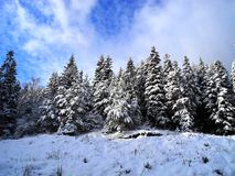 Vinter i Bosnien 3 Royaltyfri Fotografi