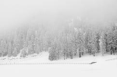 Vinter i Brasov Arkivbilder